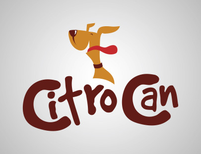 Logo Cintro Can
